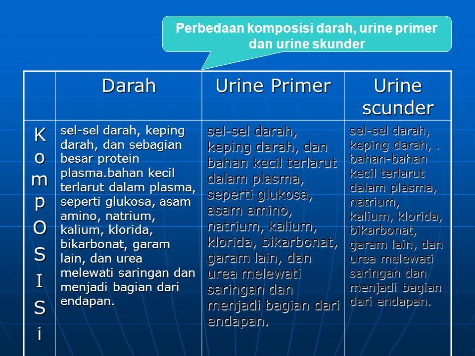 Perbedaan komposisi darah, urine primer dan urine skunder