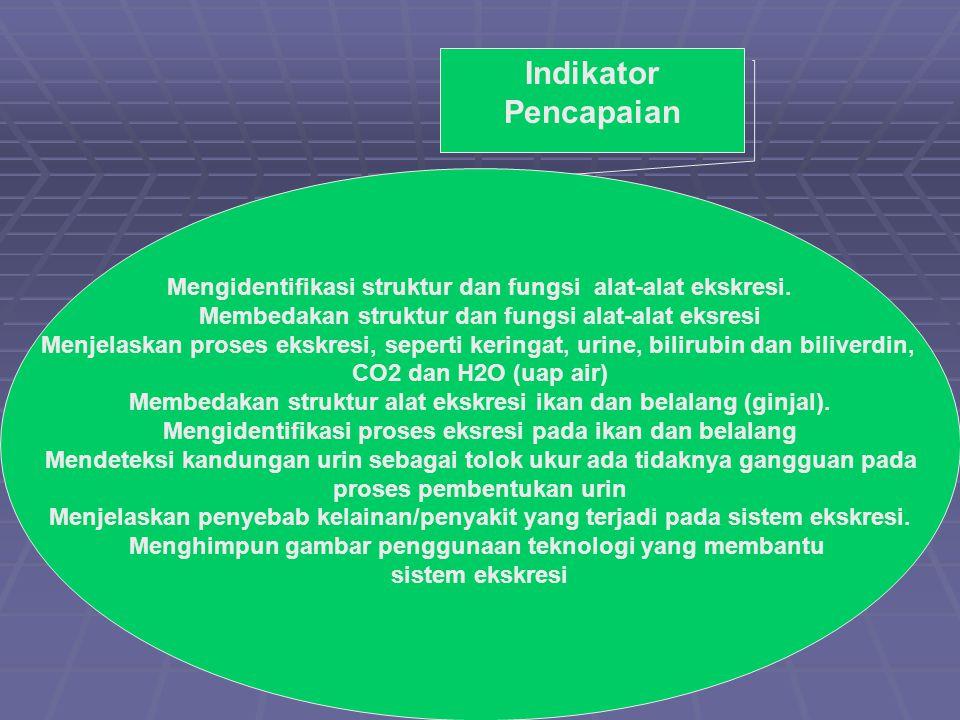 Indikator Pencapaian Mengidentifikasi struktur dan fungsi alat-alat ekskresi. Membedakan struktur dan fungsi alat-alat eksresi.