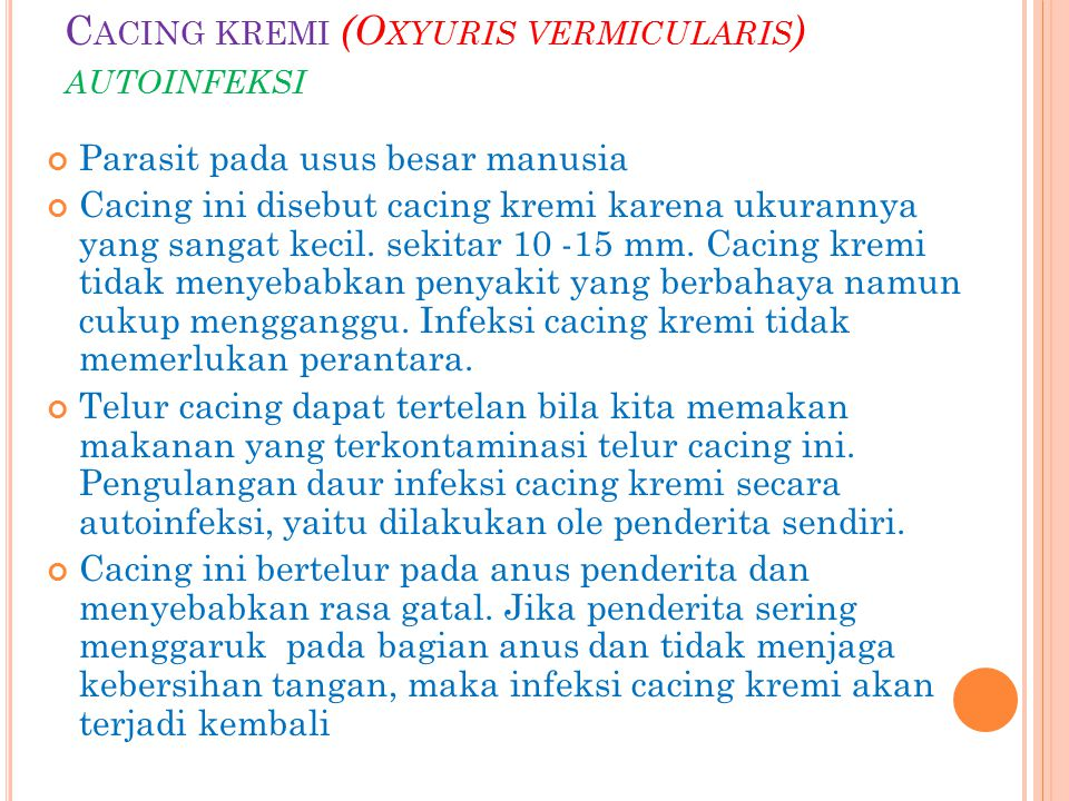 Cacing kremi (Oxyuris vermicularis) autoinfeksi