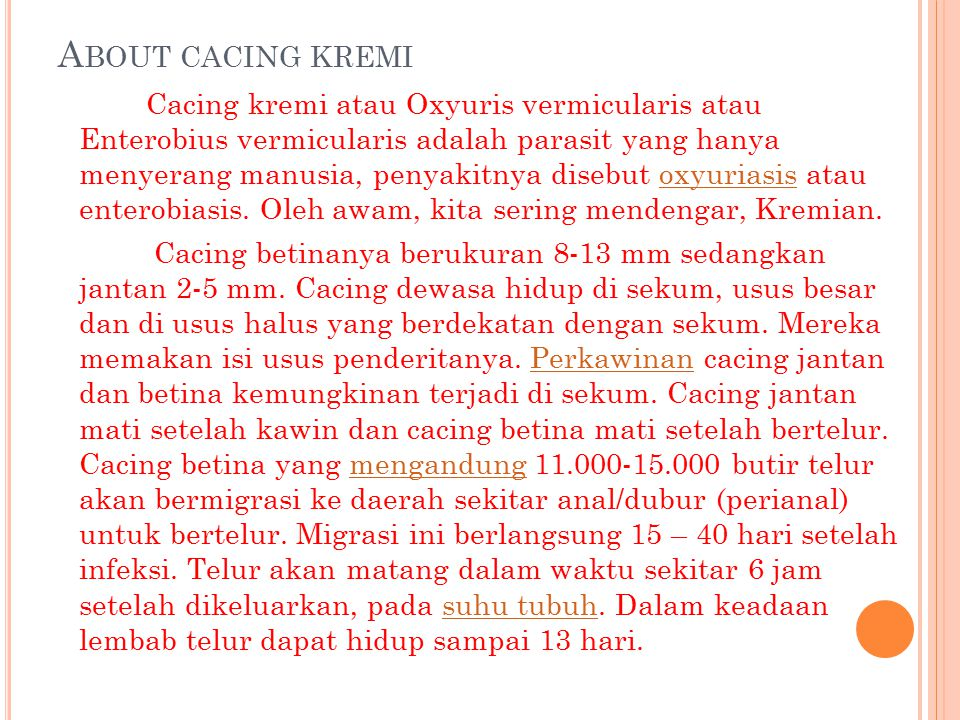 About cacing kremi