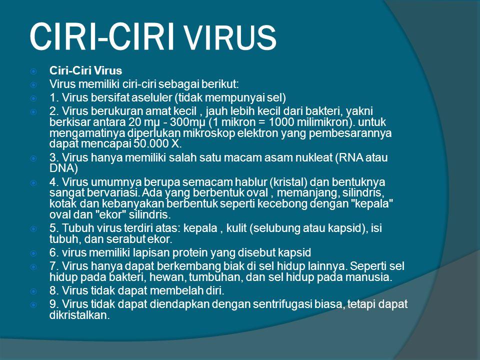 CIRI-CIRI VIRUS Ciri-Ciri Virus