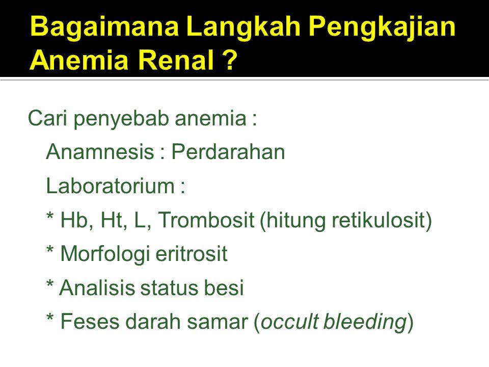 Bagaimana Langkah Pengkajian Anemia Renal