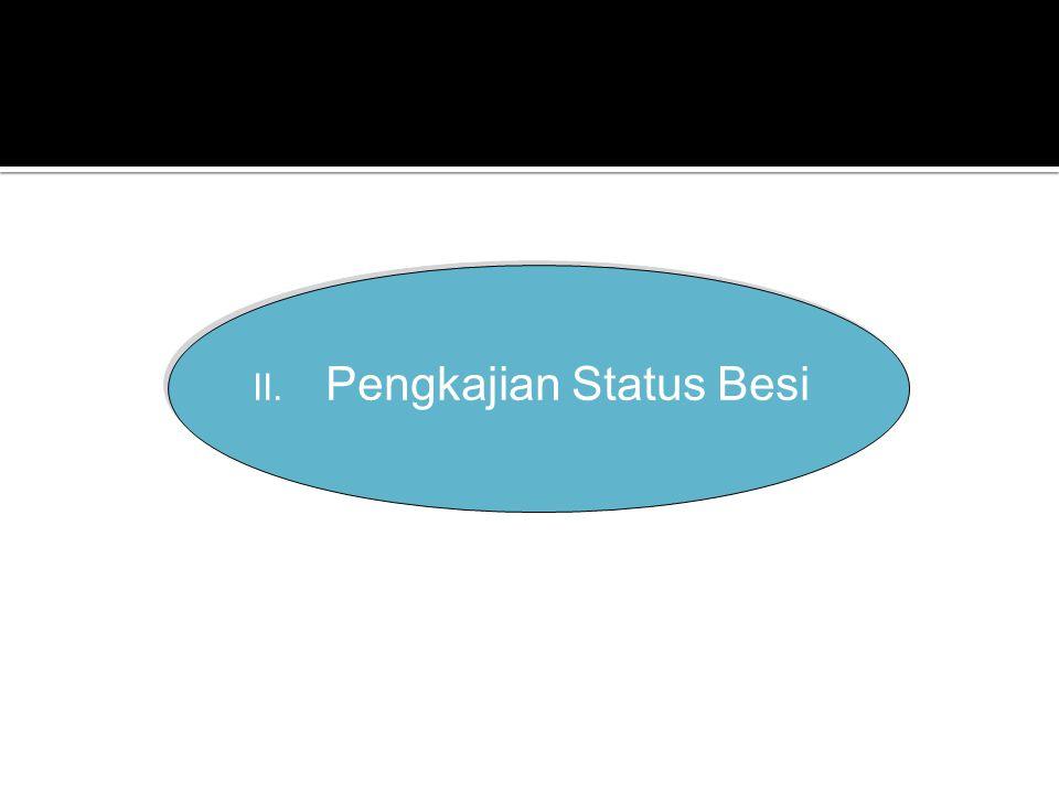 Pengkajian Status Besi