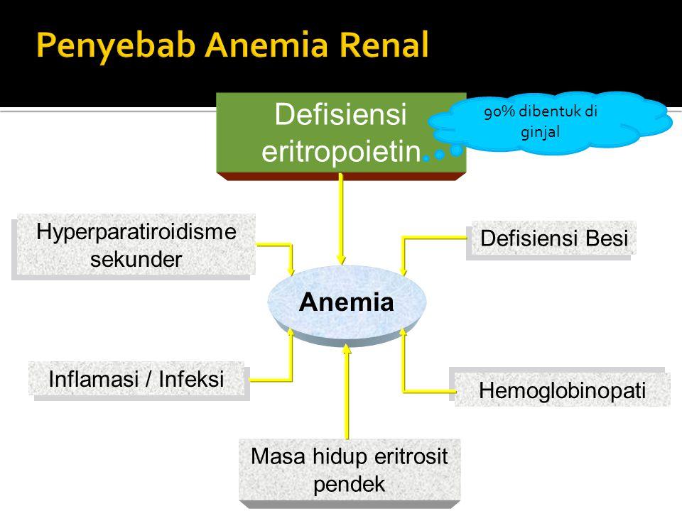 Penyebab Anemia Renal Defisiensi eritropoietin Anemia