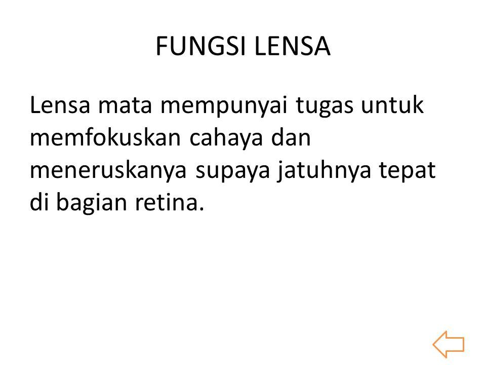 FUNGSI LENSA Lensa mata mempunyai tugas untuk memfokuskan cahaya dan meneruskanya supaya jatuhnya tepat di bagian retina.
