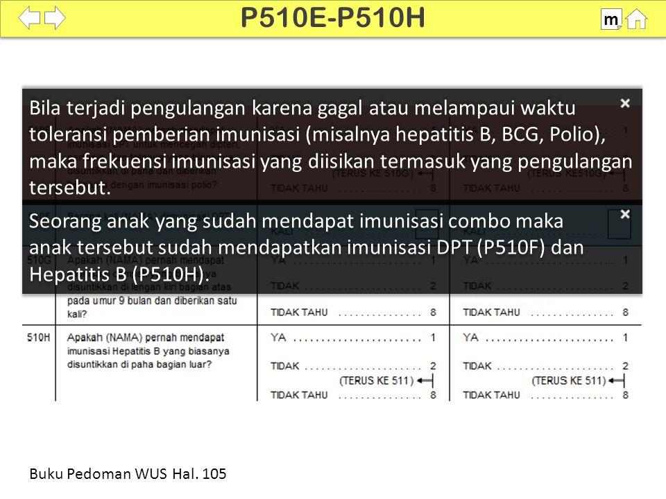 P510E-P510H m. SDKI 2012. 100%