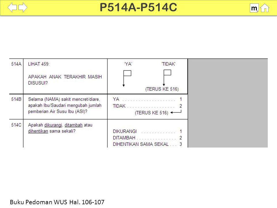 P514A-P514C m SDKI 2012 100% Buku Pedoman WUS Hal. 106-107