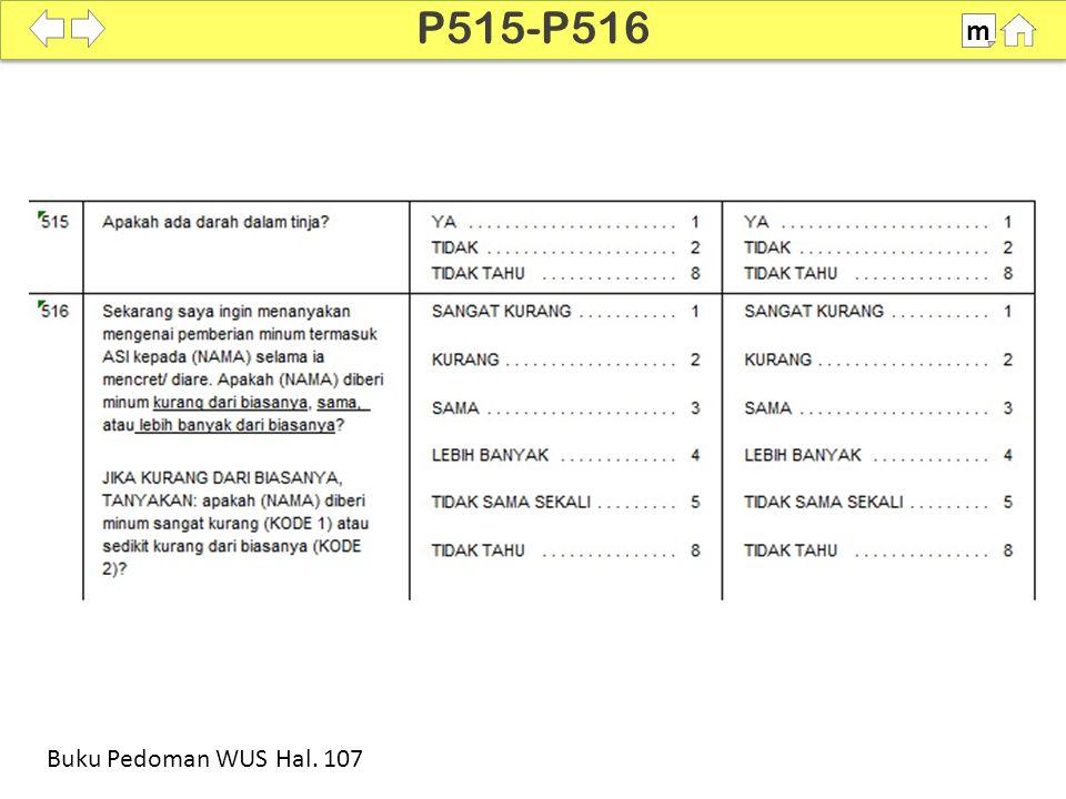 P515-P516 m SDKI 2012 100% Buku Pedoman WUS Hal. 107