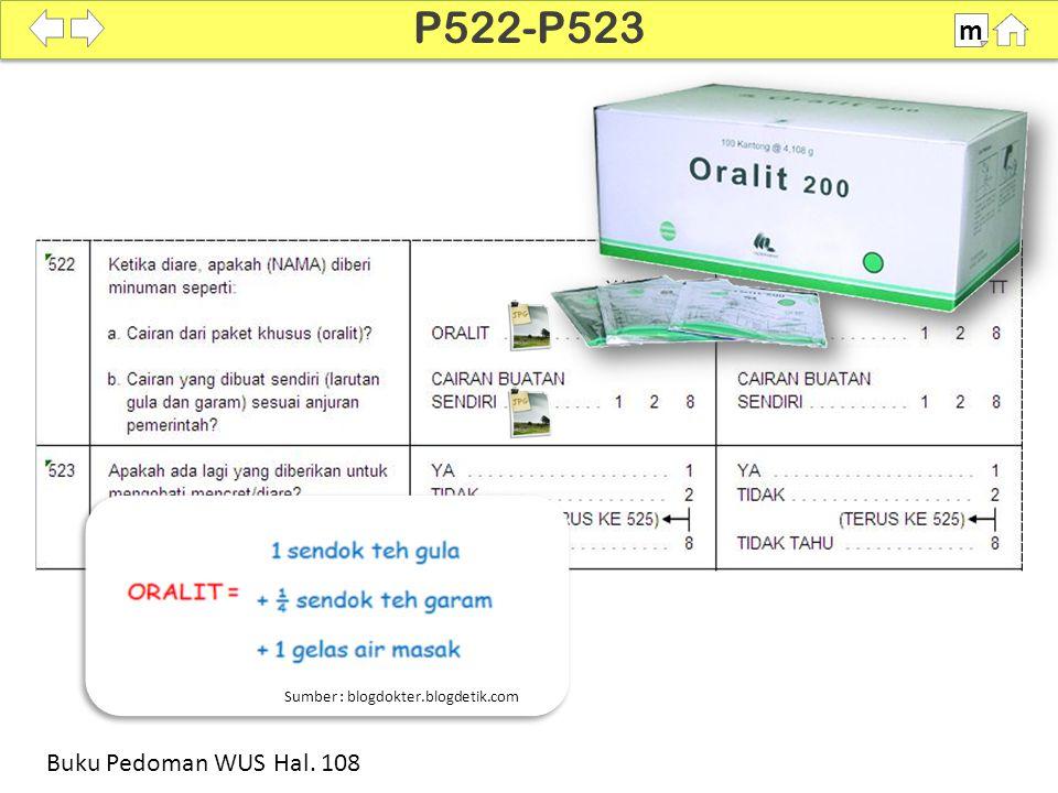 P522-P523 m Buku Pedoman WUS Hal. 108