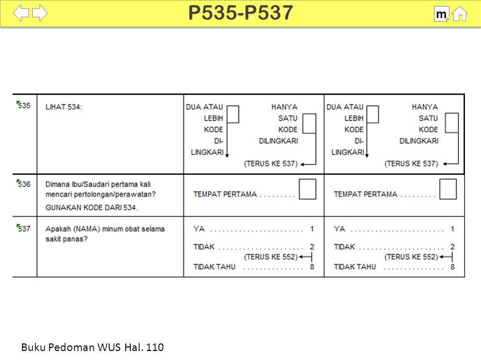 P535-P537 m SDKI 2012 100% Buku Pedoman WUS Hal. 110