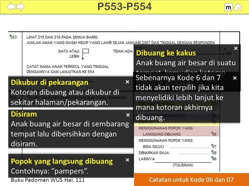 P553-P554 m. SDKI 2012. 100% Dibuang ke kakus. Anak buang air besar di suatu tempat, kemudian kotoran dibuang ke kakus.