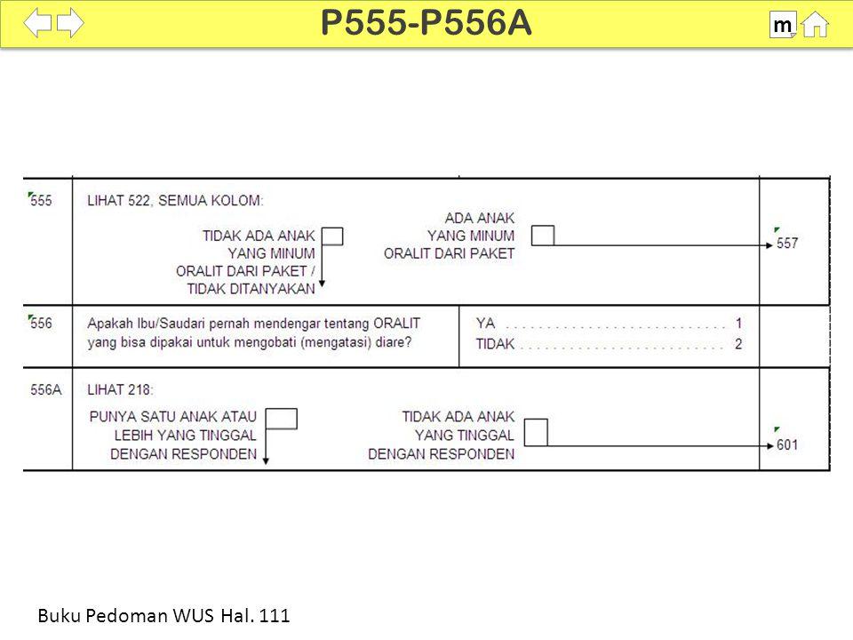 P555-P556A m SDKI 2012 100% Buku Pedoman WUS Hal. 111