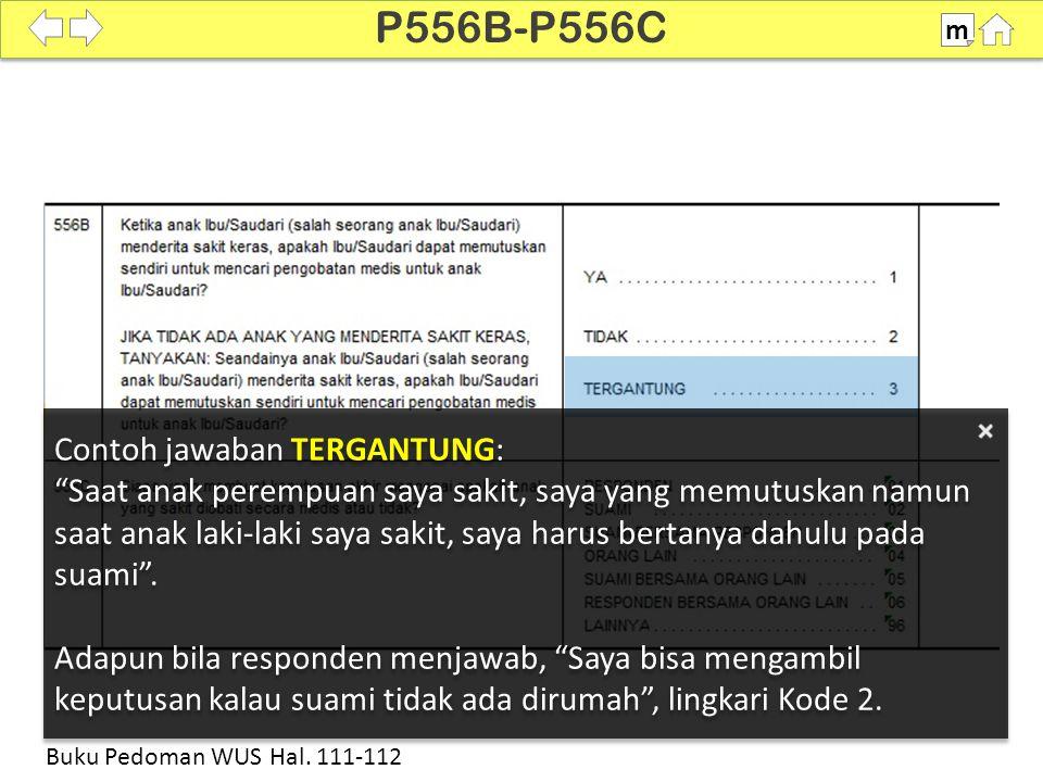 P556B-P556C Contoh jawaban TERGANTUNG: