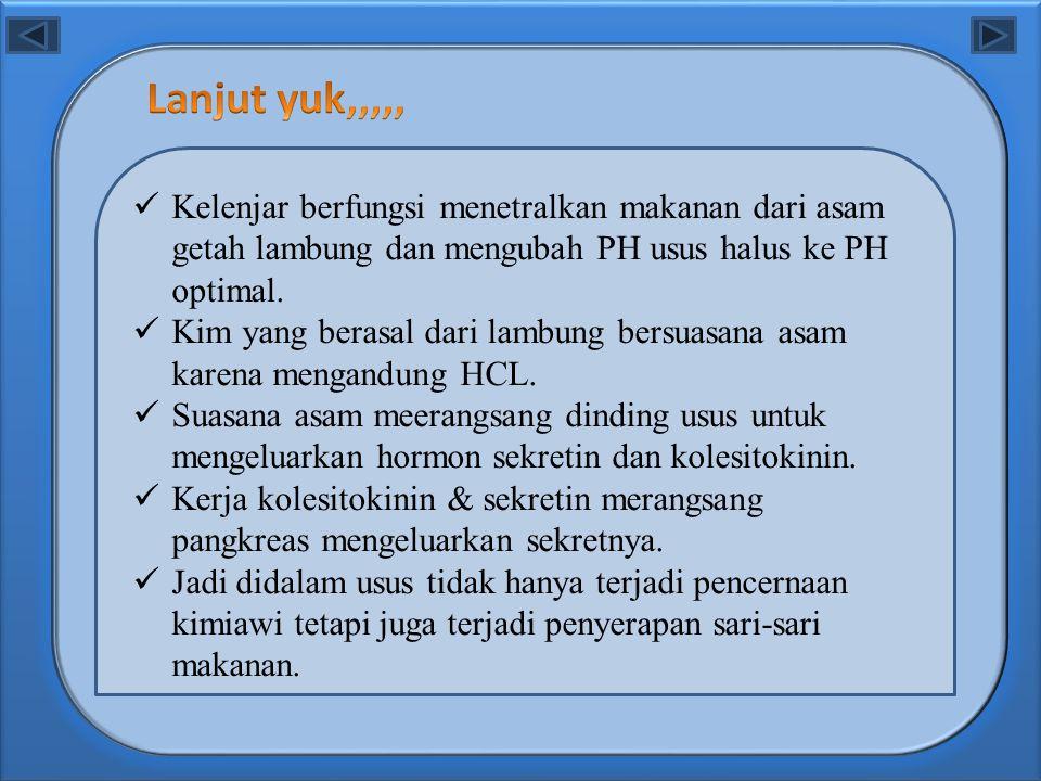 Lanjut yuk,,,,, Kelenjar berfungsi menetralkan makanan dari asam getah lambung dan mengubah PH usus halus ke PH optimal.