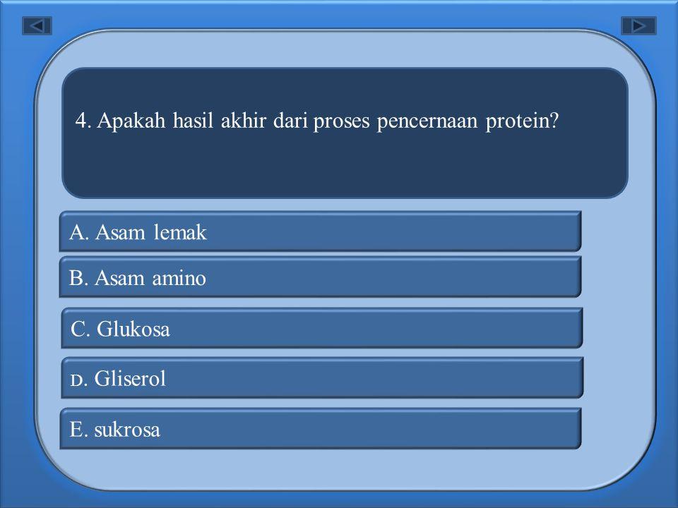 4. Apakah hasil akhir dari proses pencernaan protein