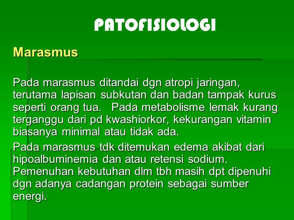 PATOFISIOLOGI Marasmus