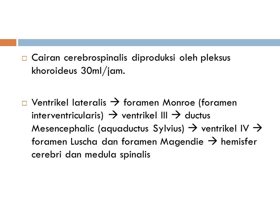 Cairan cerebrospinalis diproduksi oleh pleksus khoroideus 30ml/jam.