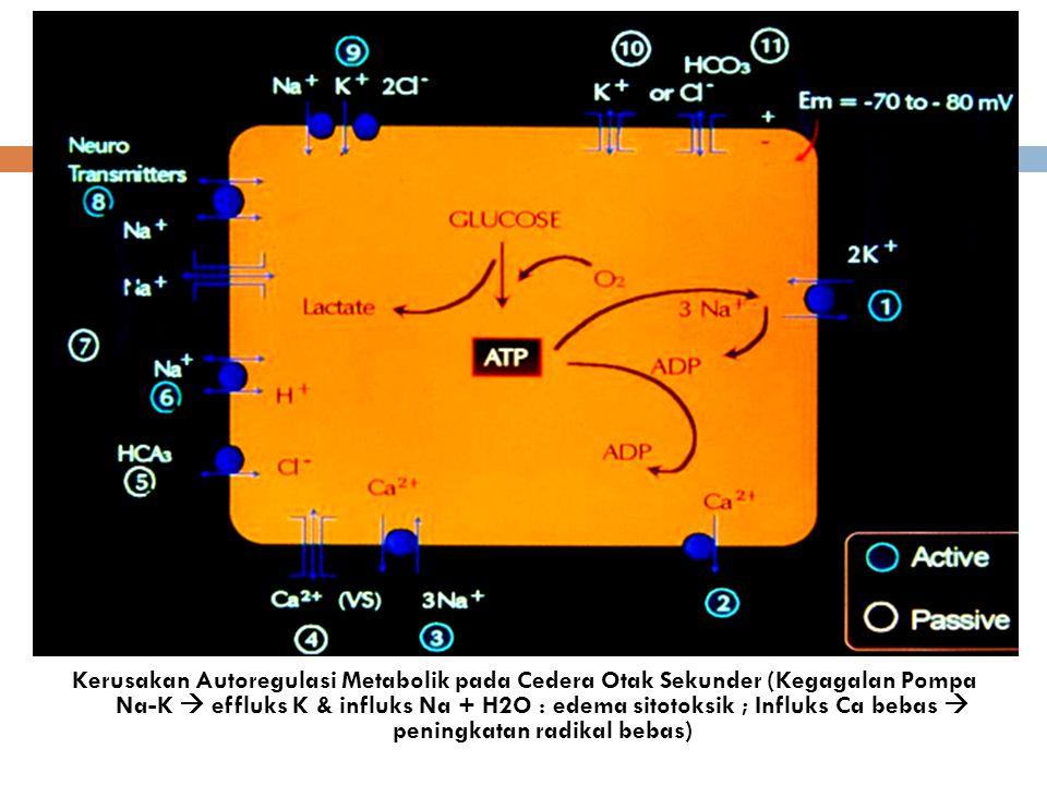 Kerusakan Autoregulasi Metabolik pada Cedera Otak Sekunder (Kegagalan Pompa Na-K  effluks K & influks Na + H2O : edema sitotoksik ; Influks Ca bebas  peningkatan radikal bebas)