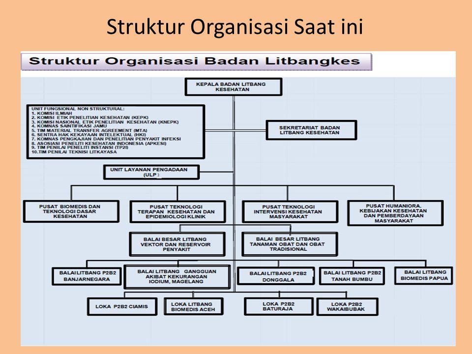 Struktur Organisasi Saat ini