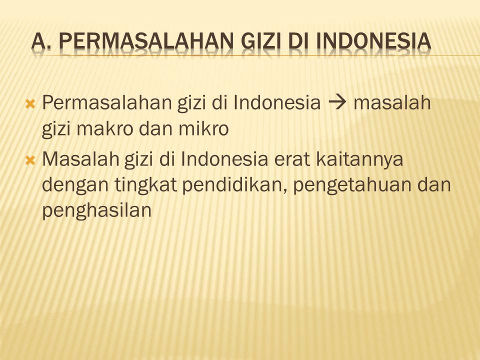 A. Permasalahan Gizi di Indonesia