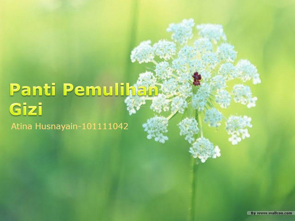 Panti Pemulihan Gizi Atina Husnayain-101111042