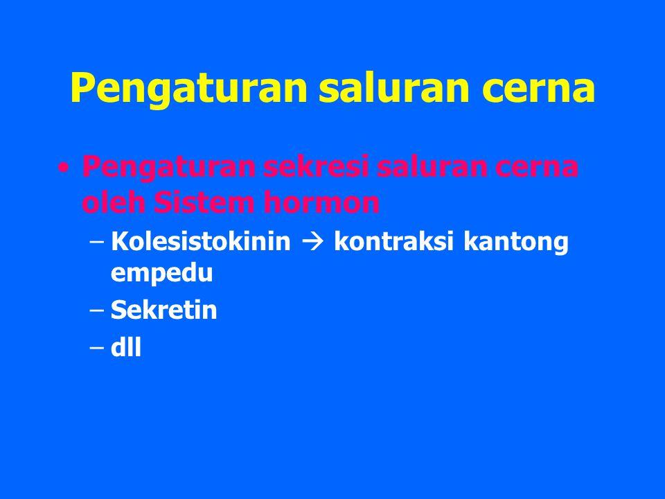 Pengaturan saluran cerna