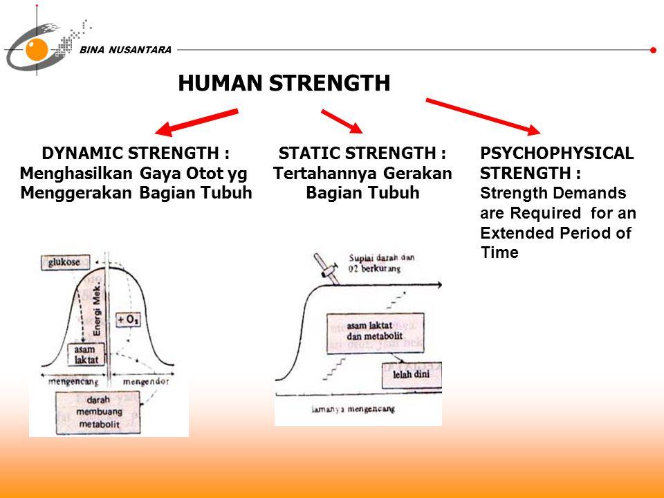 Menghasilkan Gaya Otot yg Menggerakan Bagian Tubuh