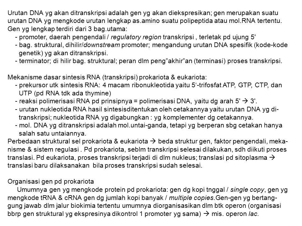 Urutan DNA yg akan ditranskripsi adalah gen yg akan diekspresikan; gen merupakan suatu urutan DNA yg mengkode urutan lengkap as.amino suatu polipeptida atau mol.RNA tertentu. Gen yg lengkap terdiri dari 3 bag.utama: