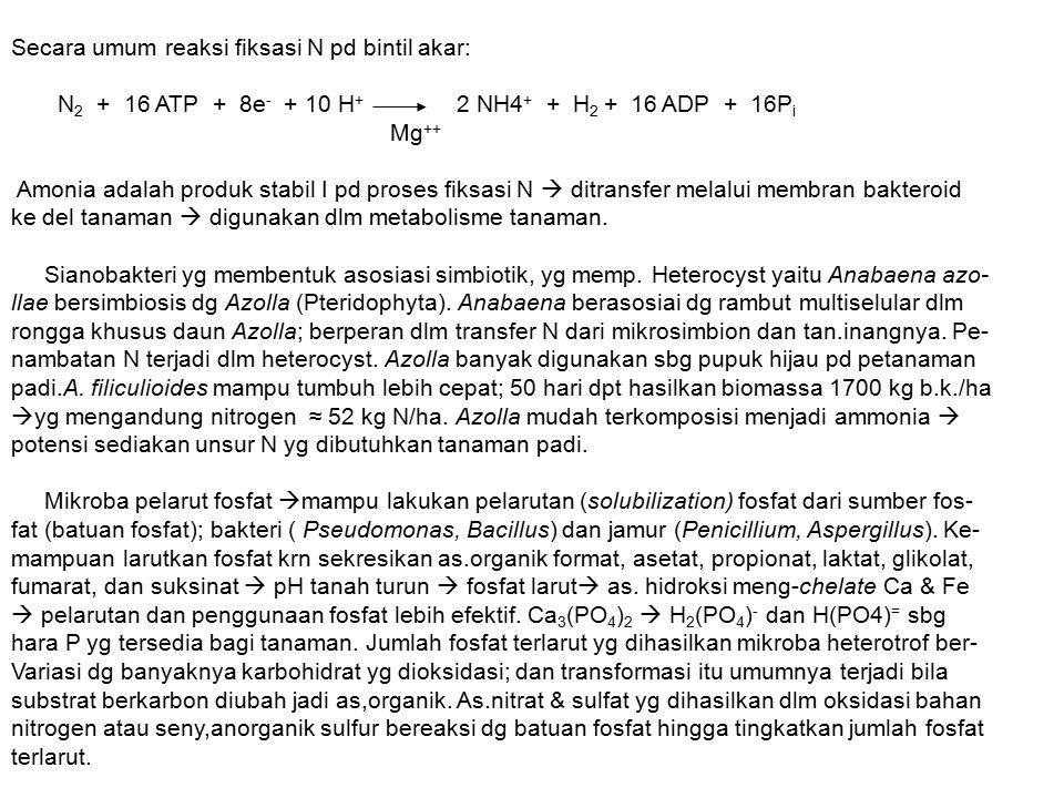Secara umum reaksi fiksasi N pd bintil akar: