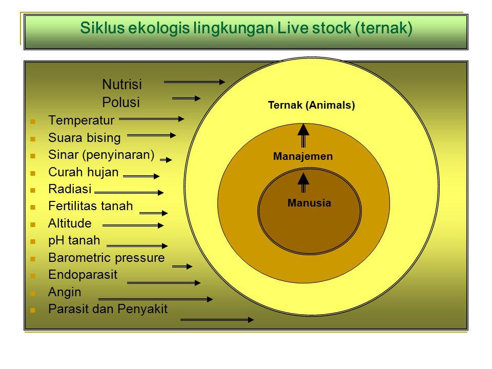 Siklus ekologis lingkungan Live stock (ternak)