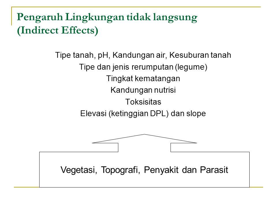 Pengaruh Lingkungan tidak langsung (Indirect Effects)
