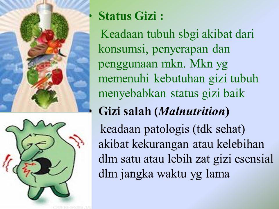 Status Gizi :