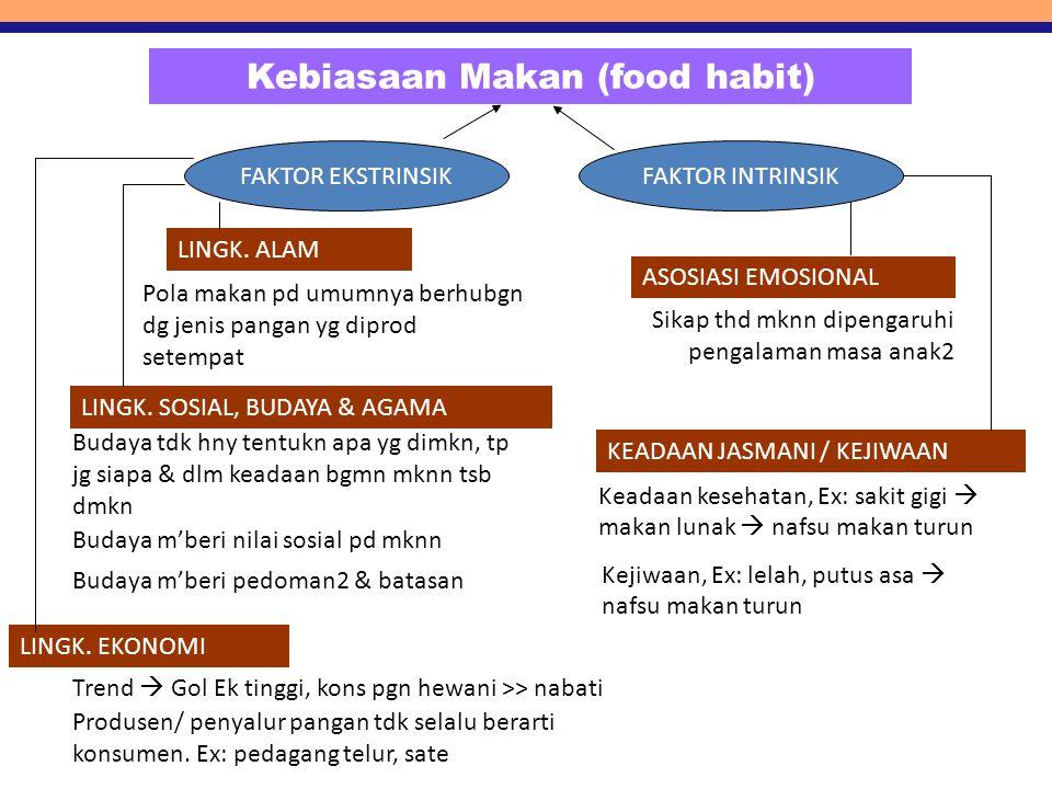 Kebiasaan Makan (food habit)