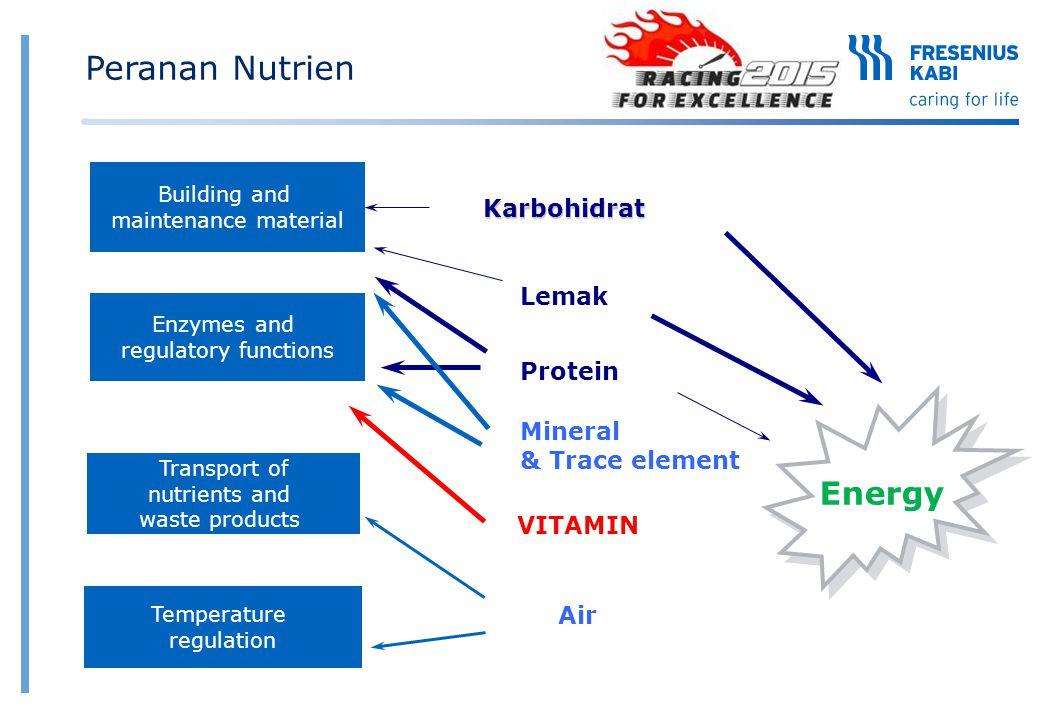 Peranan Nutrien Energy Karbohidrat Lemak Protein Mineral