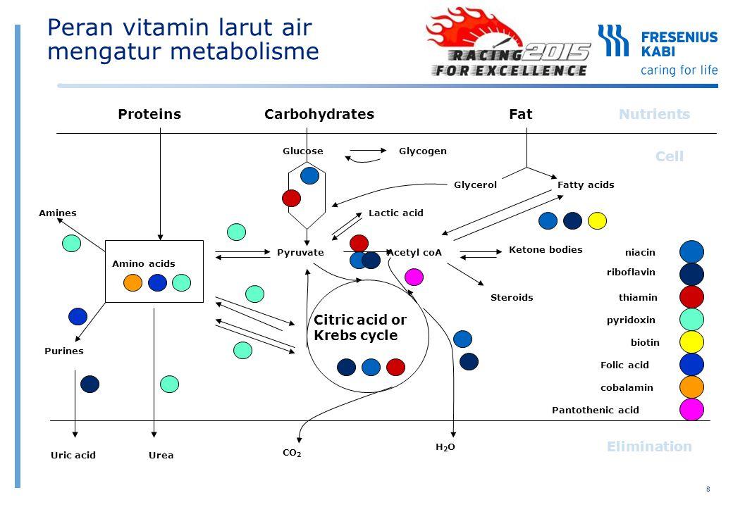 Peran vitamin larut air mengatur metabolisme