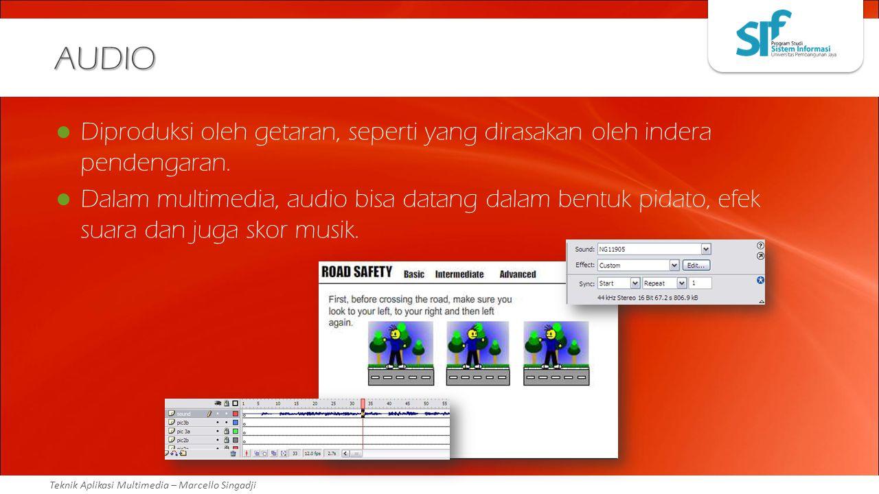 AUDIO Diproduksi oleh getaran, seperti yang dirasakan oleh indera pendengaran.