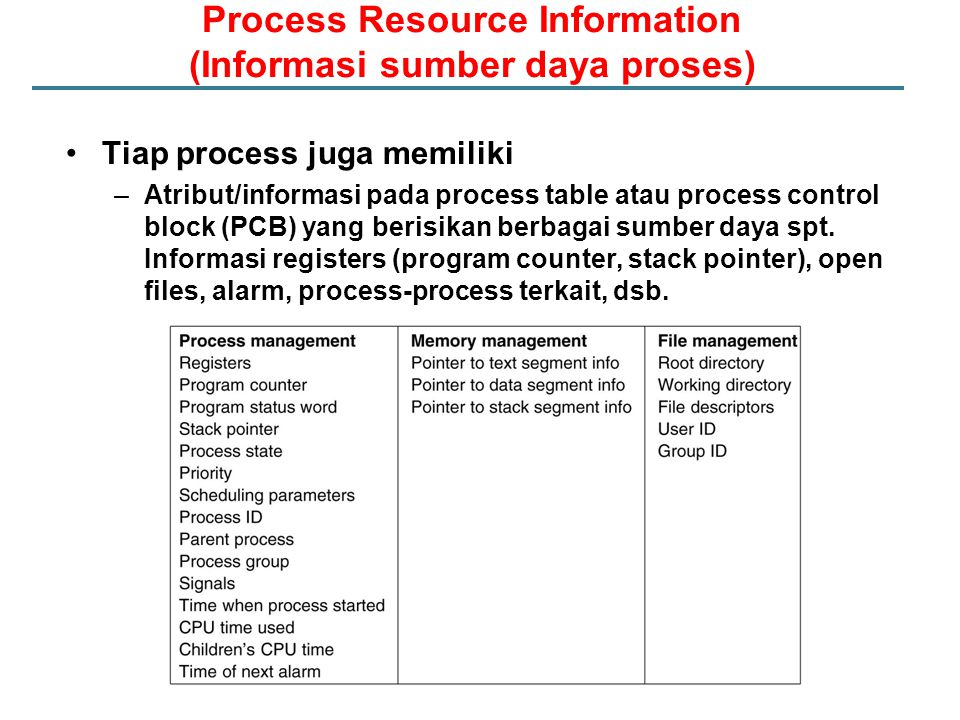 Process Resource Information (Informasi sumber daya proses)