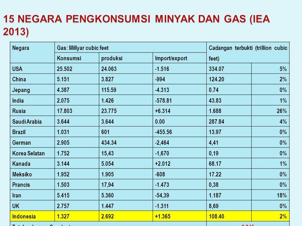15 NEGARA PENGKONSUMSI MINYAK DAN GAS (IEA 2013)