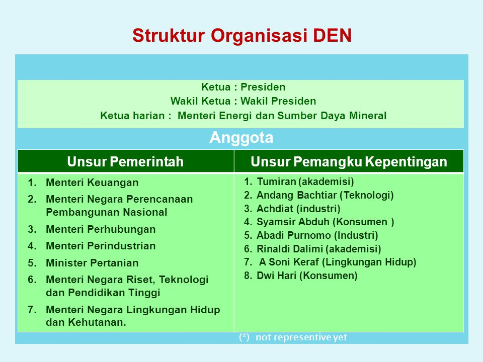 Struktur Organisasi DEN