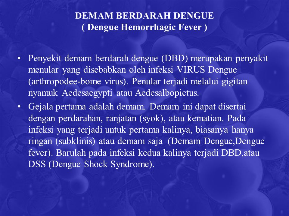 DEMAM BERDARAH DENGUE ( Dengue Hemorrhagic Fever )
