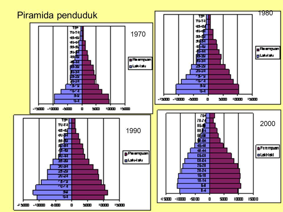 Piramida penduduk 1980 1970 2000 1990