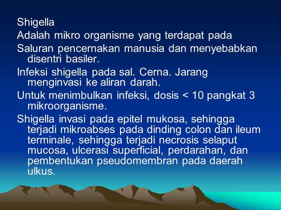 Shigella Adalah mikro organisme yang terdapat pada. Saluran pencernakan manusia dan menyebabkan disentri basiler.
