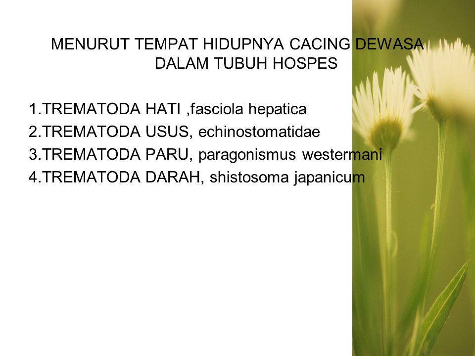 MENURUT TEMPAT HIDUPNYA CACING DEWASA DALAM TUBUH HOSPES 1