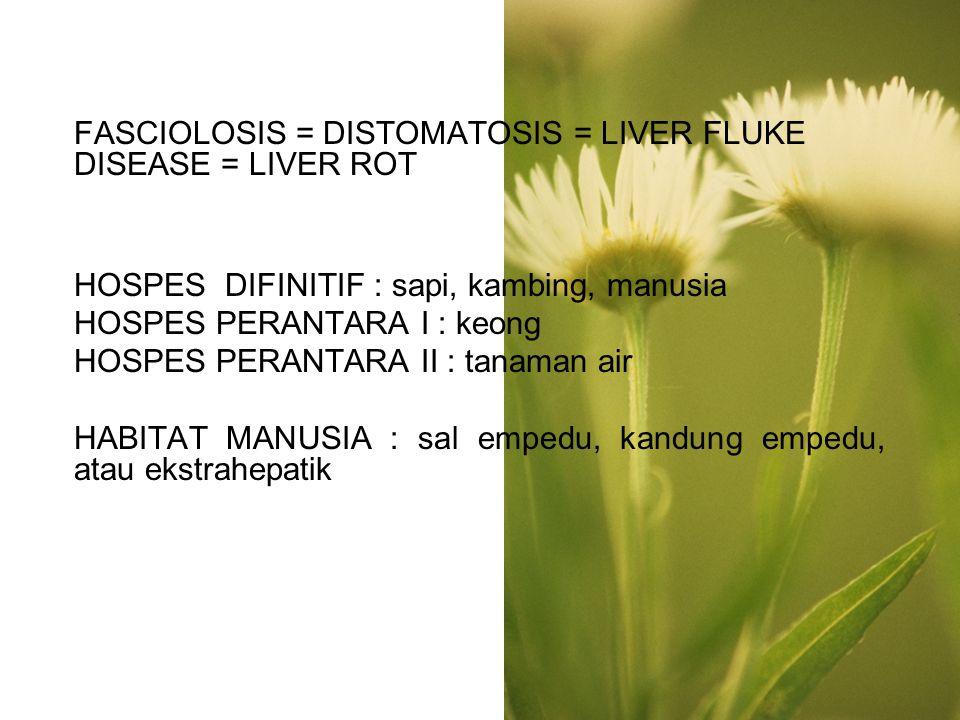 FASCIOLOSIS = DISTOMATOSIS = LIVER FLUKE DISEASE = LIVER ROT