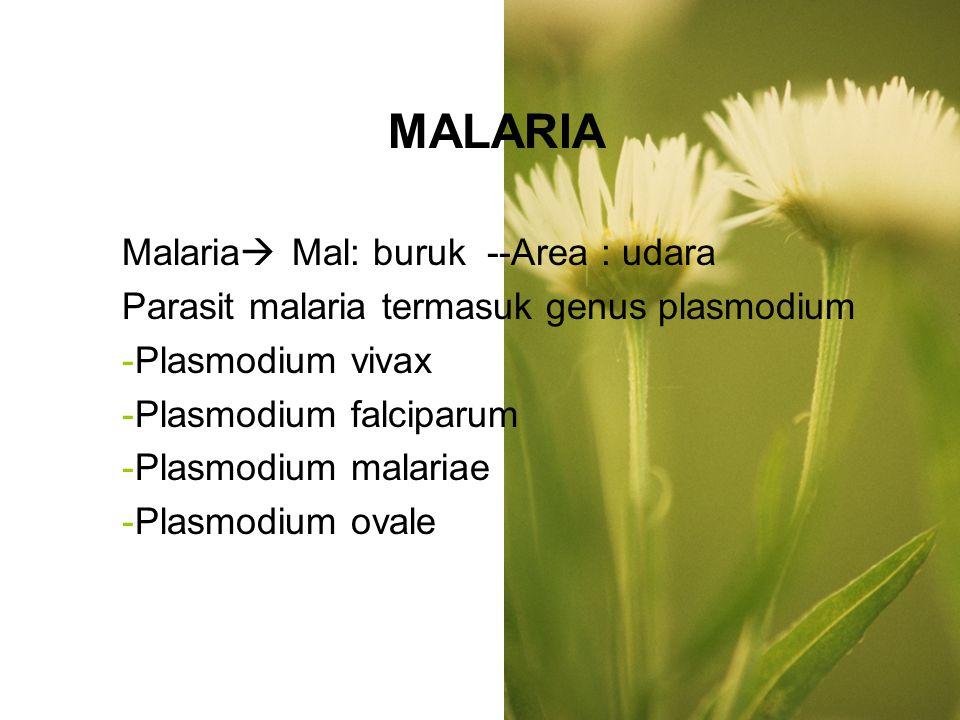 MALARIA Malaria Mal: buruk --Area : udara