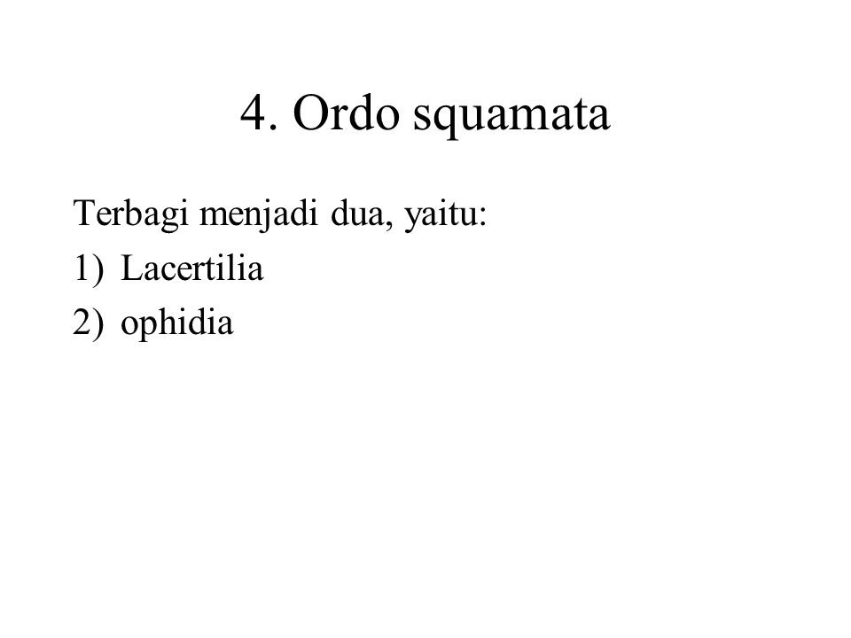 4. Ordo squamata Terbagi menjadi dua, yaitu: Lacertilia ophidia