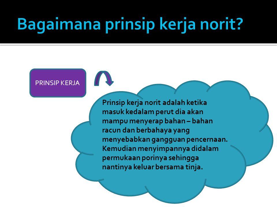 Bagaimana prinsip kerja norit