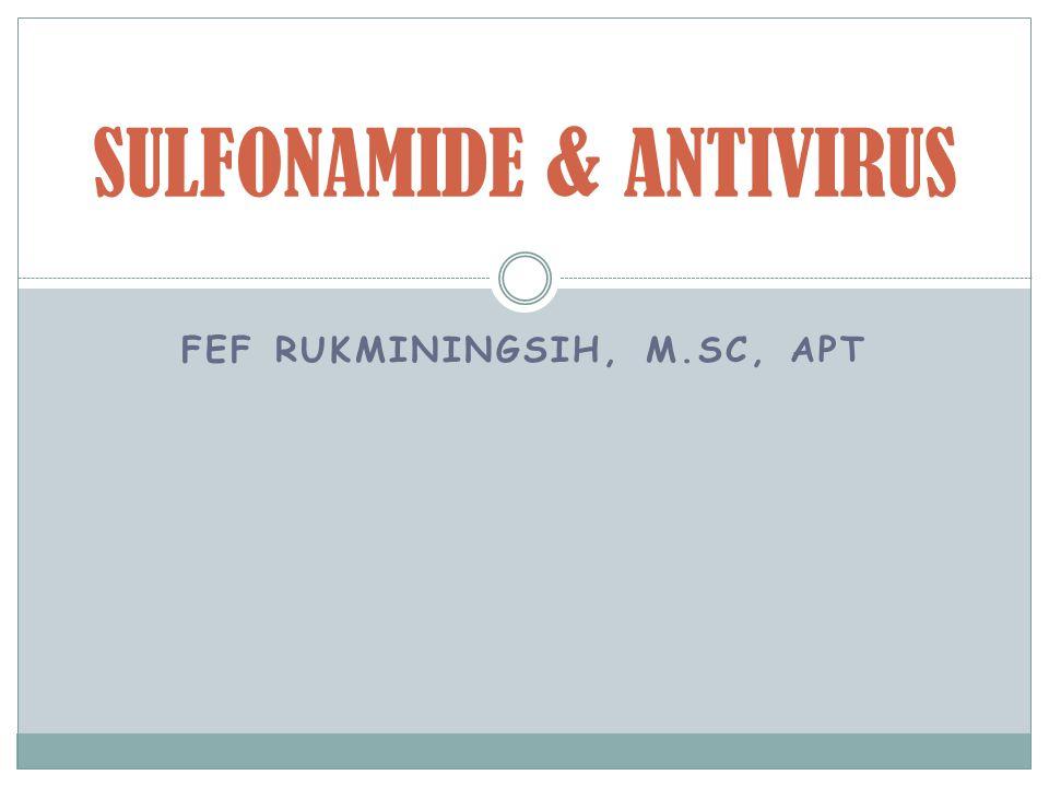 SULFONAMIDE & ANTIVIRUS