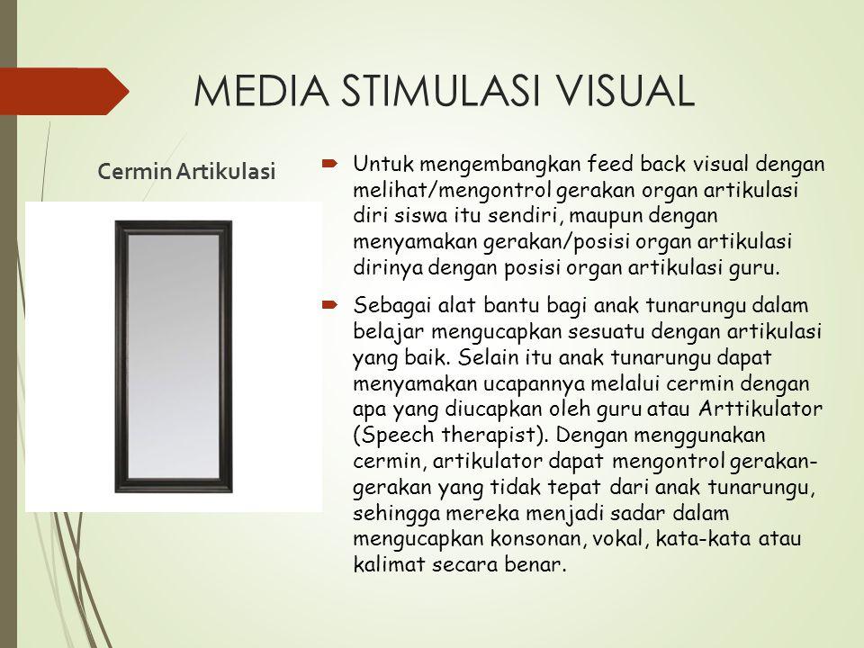 MEDIA STIMULASI VISUAL