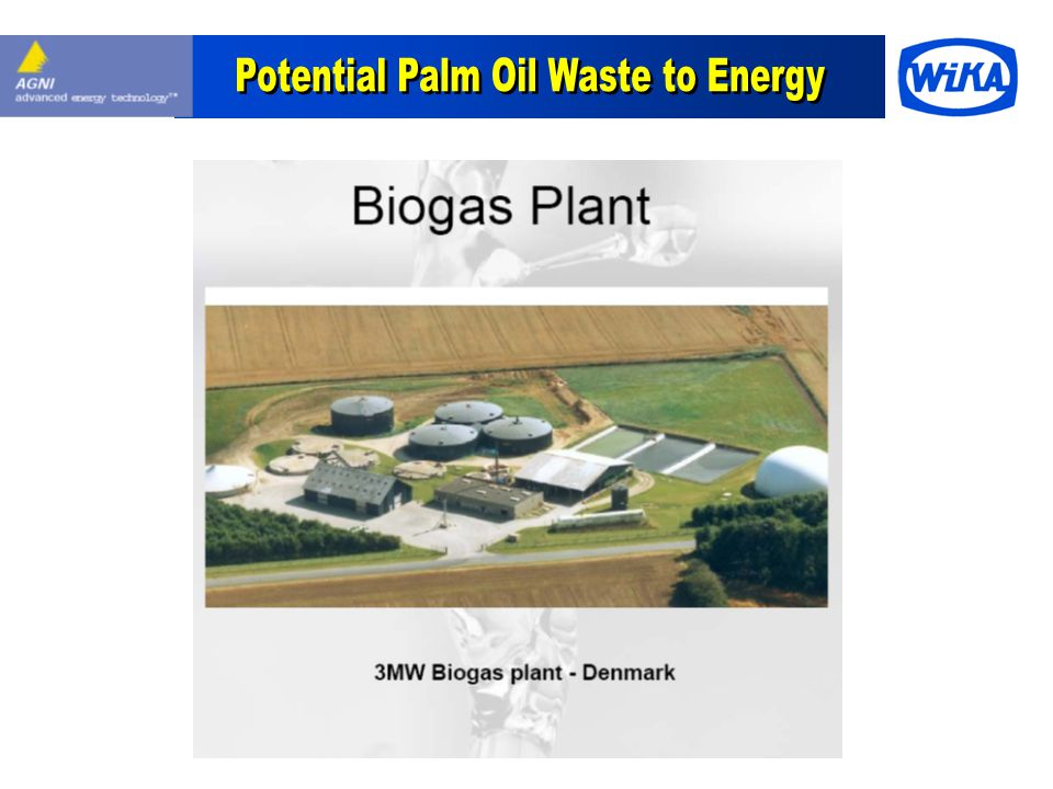 Potential Palm Oil Waste to Energy